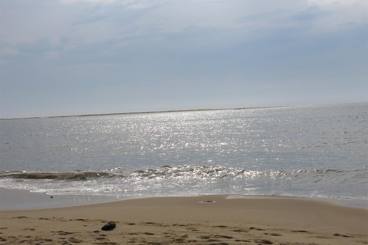 la dune du pila